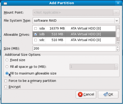 15 make file system type software RAID check the first drive - fill to max